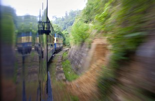 Train through the Nilgiri Hills copy