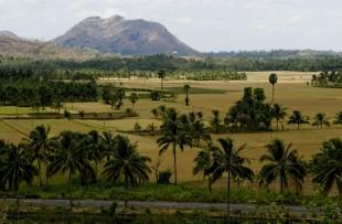 Palakkad rural scene copy