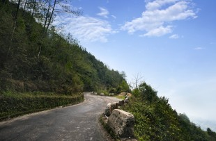 Road passing through a mountain, Darjeeling, West Bengal, India copy